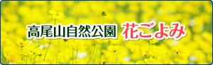 高尾山自然公園 花ごよみ