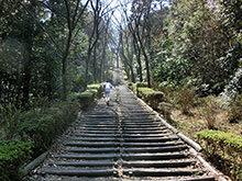 365歩の階段